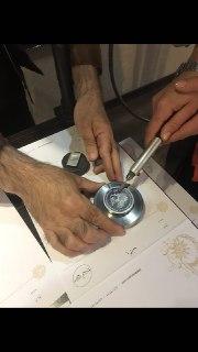 امحاء سکه و مدال یوزپلنگ ایرانی