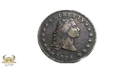 سکه دلار با موهای افشان  (Flowing Hair dollar)